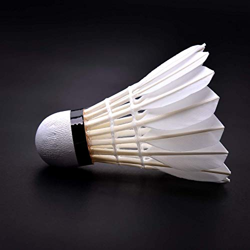 KEVENZ 24-Pack Advanced Goose Feather Badminton Shuttlecocks,Nylon Feather Shuttlecocks High Speed Badminton Birdies Balls with Great Stability and Durability (White,24-Pack) by KEVENZ (Image #6)