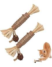 LUTER 2st Catnip Leksaker Tuggpinnar för Kattren Göring Tugg Leksaker för Katter för Kattungar Inomhus Minskar Tryck och Ensamhet