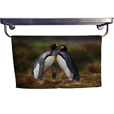 "alisoso Animal Popular Bath Towel Set Penguins Cuddling in Wild Nature Love Valentines Affection Romance Falkland Islands Fun Hand Towels Set W 10"" x L 10"" Multicolor"