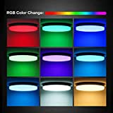 Oeegoo RGB Led Flush Mount Ceiling Light with