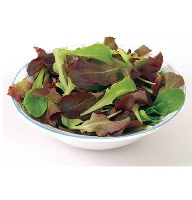 David's Garden Seeds Lettuce Five Star Greenhouse Mix D192A (Multi Color) 1000 Open Pollinated Seeds