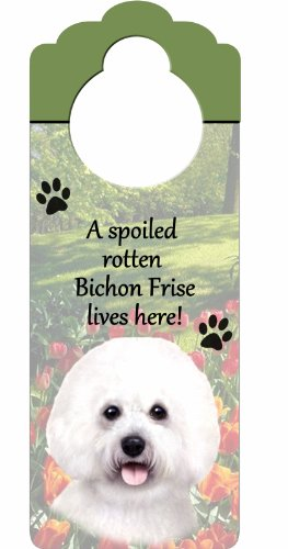 """Bichon Frise Wood Sign """"A Spoiled Rotten Bichon Frise Lives Here""""with Artistic Photograph Measuring 10 by 4 Inches Can Be Hung On Doorknobs Or Anywhere In Home Review"""