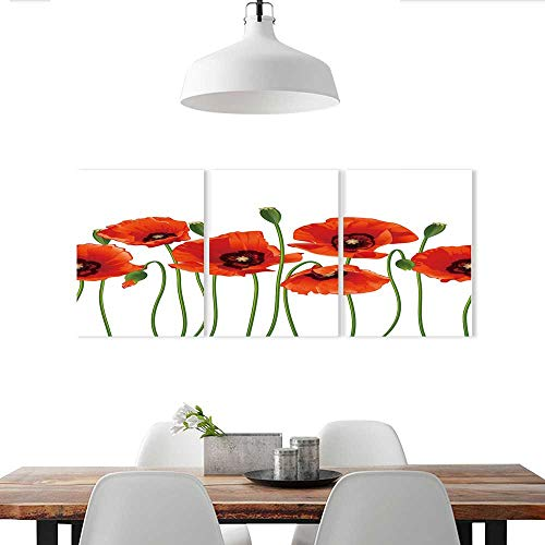 Triptych Canvas Set Floral Poppies of Spring Season Pastoral Flowers Botany Bouquet Field Nature Theme Drapes Red Stickers for Wall Home