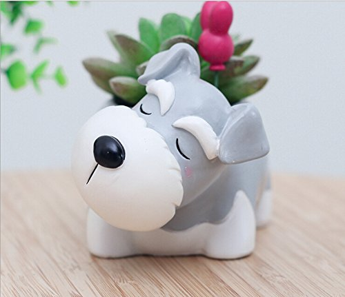 Youfui Cute Dog Flowerpot Small Succulent Plants Container Ornament (Schnauzer)