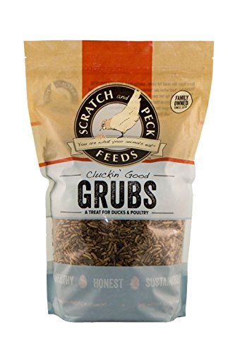 Scratch and Peck Feeds - Cluckin' Good Grubs Tasty Treats for Chickens and Ducks - Dried Black Soldier Fly Larvae - 1.25-lbs