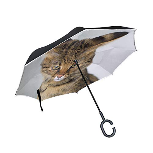 Double Layer Inverted Savannah Cat Closeup Feline Hybrid Serval Domestic Umbrellas Reverse Folding Umbrella Windproof Uv Protection Big Straight Umbrella For Car Rain Outdoor With C-shaped - Double Savannah Handle