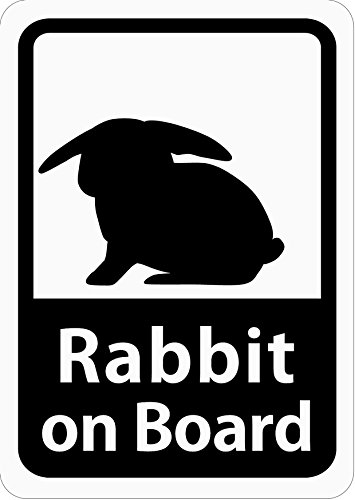 Craft Bunny ( Japan ) Car Magnet Sticker Rabbit (lop-eared)/Rabbit on Board/White/s23e