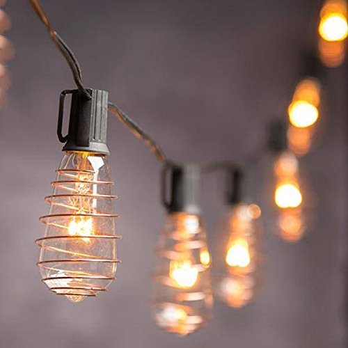 CWI Gifts 10 Ct Edison Bulb 10Ft Long Strand w/Copper Accent w 10'10' Accents