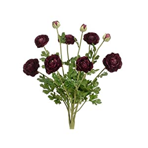 "19"" Ranunculus Bush w/7 Flw. 3 Buds Eggplant (Pack of 6) 116"