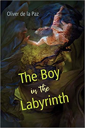 The Boy In The Labyrinth Poems Akron Series In