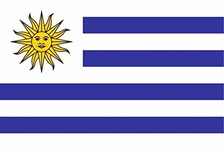 Carsticker flag decal sticker colors in two sizes uruguay laminated very long durable
