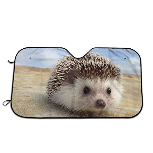 Porcupines and Hedgehogs Sun Protection Car Windshield Sun Shade- Keep Your Vehicle Cool-UV Ray Protector Sunshad for Car Auto Sedan Truck SUV