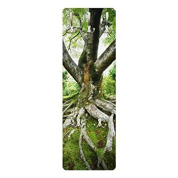 Perchero - árbol Antiguo 139 x 46 x 2 cm, COATRACK, Perchero ...