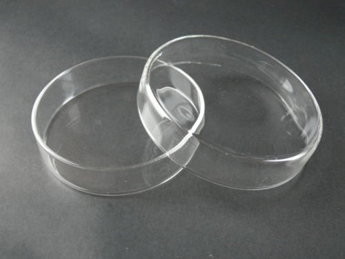 Borosilicate Glass Petri Dishes with Covers 100 mm Diameter (set of 10)