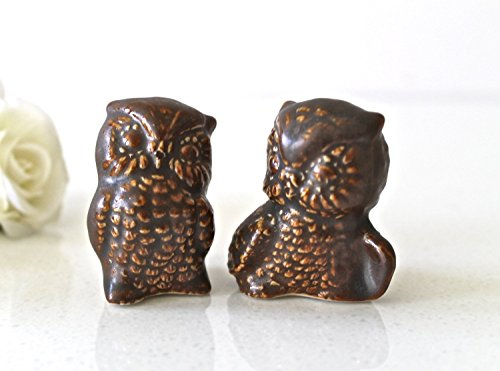 2 Cute Owls Wedding cake Topper in Brown - Owl Couple Figurine - Owl Home decor - Mr and Mrs Owl C