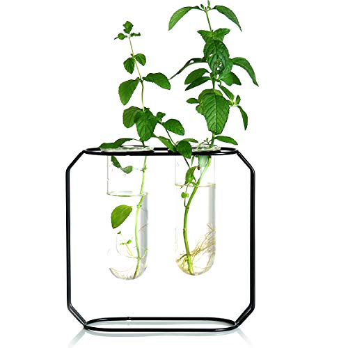 Ivolador Modern Metal Frame Test Tube Vase Planter Terrariums Decorations for Living Room (Black) (Test Tube Rack Metal)