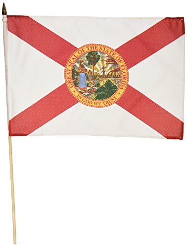 Us Flag Store Florida Flag, 12 by 18-Inch