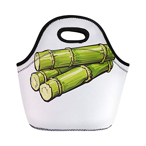 Semtomn Neoprene Lunch Tote Bag Pile of Fresh Raw Green Sugar Cane Sketch Realistic Reusable Cooler Bags Insulated Thermal Picnic Handbag for Travel,School,Outdoors,Work ()
