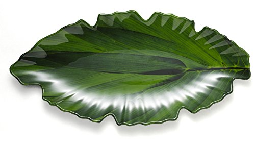 Q Squared Zen BPA-Free Melamine Small Platter, 16 by 7-Inches, (Green Fish Platter)