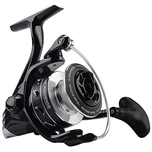 (KastKing Valiant Eagle Spinning Reel, 6.2:1 High Speed Gear Ratio, Freshwater and Saltwater Fishing Reel, Carbon Fiber Frame & Rotor, Braid Ready Spool, 10+1 BB, Smooth & Powerful Carbon Drag)