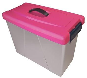 Cathedral - Caja con asa para archivadores (plástico), color rosa: Amazon.es: Oficina y papelería