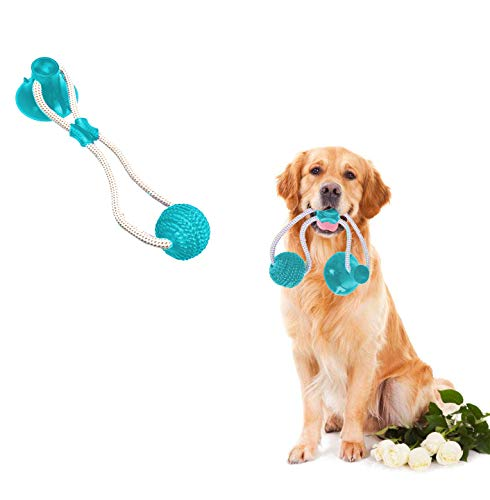 Feilifan Pet Molar Bite Ropes Toy, Multifunction Interactive Self-Playing Rubber Ball Toy with Suction Cup Molar Chew Toy Cleaning Teeth for Dogs (Green/Blue, 1 Pack)