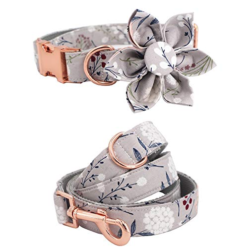 Girl Dog Collar Dog Flower and Leash Set for Pet Dog Cat with Rose Gold Metal Buckle (S)