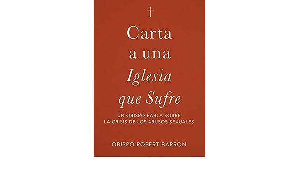 Carta a una Iglesia que Sufre: un obispo habla sobre la crisis de abusos sexuales (Spanish Edition)