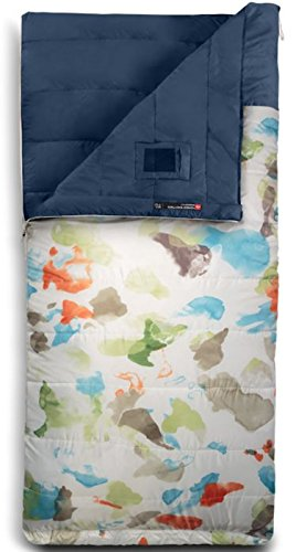The North Face Homestead Twin 40/4 Sleeping Bag Reg VINTAGE WHITE SPARSE MO PRINT/SHADY BLUE