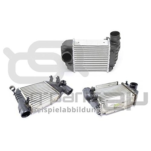 Wezel 13014700 Engine Compartment: