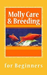 Molly Care & Breeding for Beginners