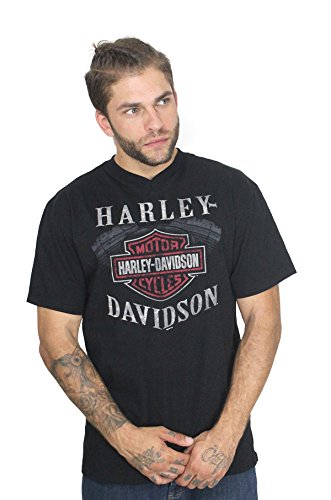 Harley-Davidson Mens Sinful Pleasure B&S Engine V-Neck Shirt (Large)