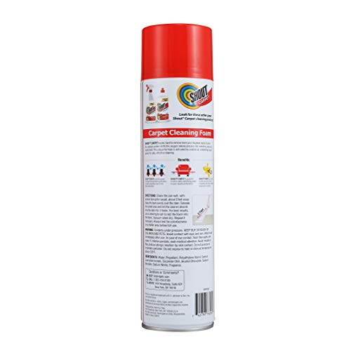 Shout Aerosol Cleaning Oxy | Pet Carpet + Odor Eliminator Foaming Stain Remover, Pack of 1, Fresh Scent