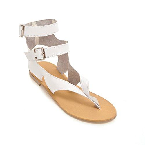 White Sauvages pour Plage Télévision de Sandales Ronde Chaussures Boucle Toe Clip Décontracté Tête d'été Femmes 6fgwxBZqa