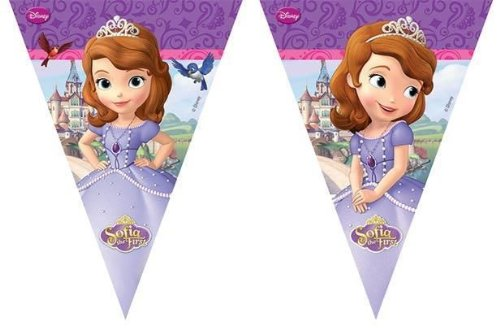 Sofia The First Birthday Party Flag Banner Bunting  sc 1 st  Amazon UK & Sofia The First Birthday Party Paper Plates x 8: Amazon.co.uk: Toys ...