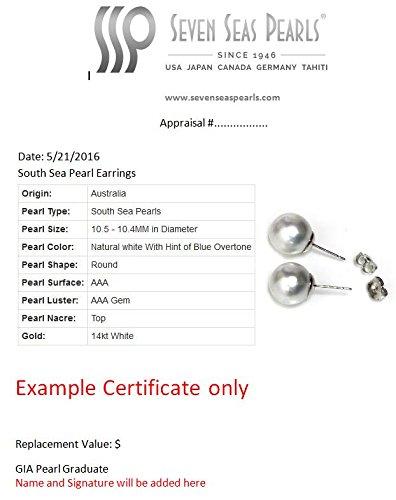 14k Yellow Gold Cultured Saltwater Akoya Pearl Dangle Hoop earrings - AAA and AAA Flawless (7.0-7.5mm AAA) by Seven Seas Pearls (Image #5)