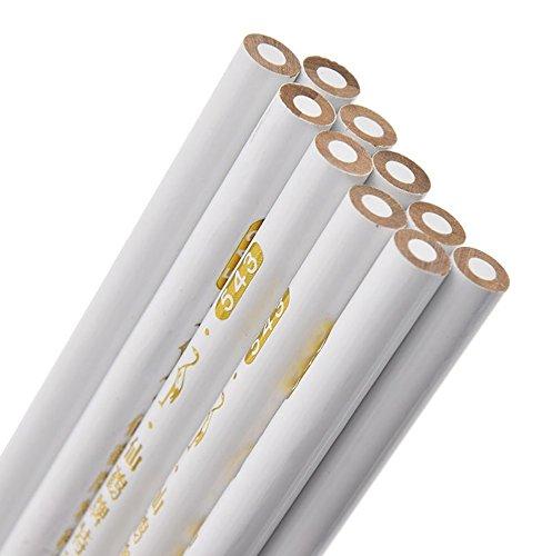10個入り鉛筆マーキングツール裁縫パターンキットファブリックProfessional Tailor dp065   B07BSSP9WX