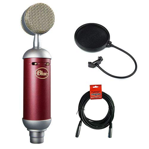 Blue Spark SL Large-Diaphragm Studio Condenser Microphone with XLR Cable and Pop Filter ()