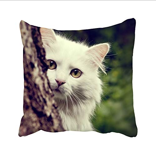 FunnyLife Square Pillowcase - Kids or Baby Zippered Pillowcase, White Cat Pillow Protector,one-Sided (Dreamsack White Pillowcase)