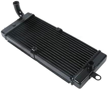 Water Tank Radiator Cooler for Honda Shadow ACE 750 VT750C 1997-2003 02 01 2000