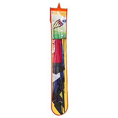 HQ Kites Triangulation - Kite 87 Inch Single Line Kite,  Color: Rainbow- Active Outdoor Fun for Ages 12 Years and Up: Toys & Games
