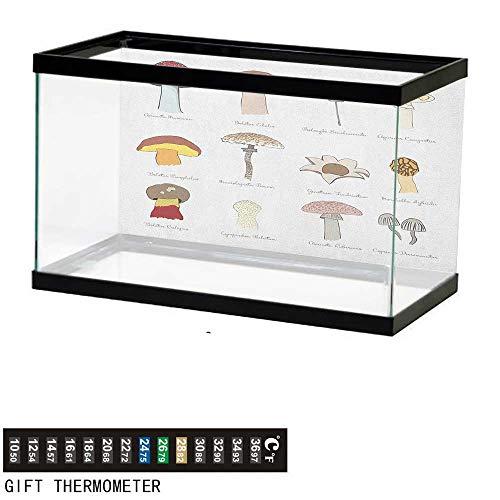 (Jinguizi MushroomFish Tank BackdropColorful Fungi Pattern Blusher Boletus Sketch Style Plants Autumn Illustration24 L X 12