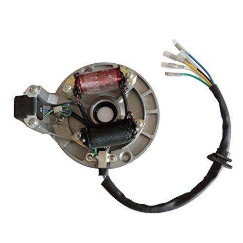 GOOFIT 2 Coil Magneto Stator for 50cc 70cc 90cc 110cc 125cc Taotao (Magneto Stator)
