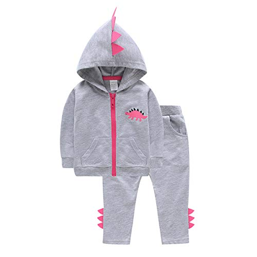 Fashion Baby Boy Girl Dinosaur Hoodie Tracksuit Zipper Jacket Sweatshirt Pant Outfits Set (3T-4T, Grey) -