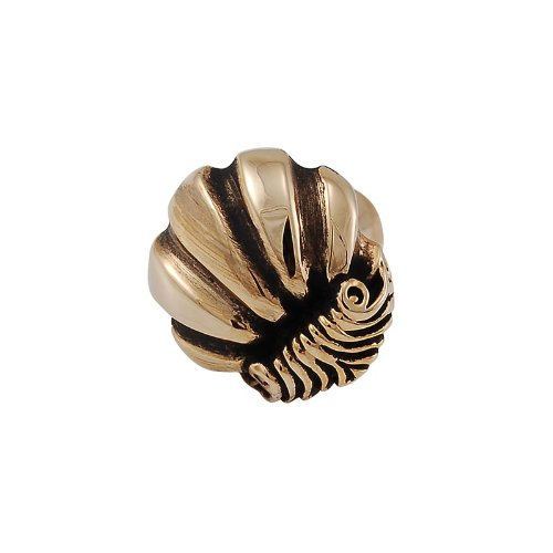 Vicenza Designs K1103 Shell Knob, Small, Antique Gold ()