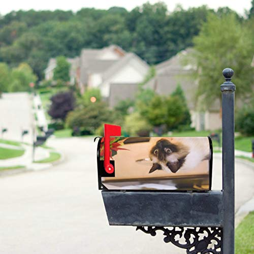 JGYJF The Red Rose Broke The Pot Cat Mailbox Covers Standard Size Original Magnetic Mail Cover Letter Post Box 21