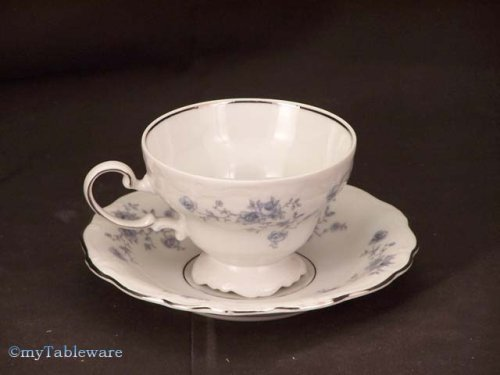 Johann Haviland Blue Garland Footed Cup & - Saucer Cup Footed