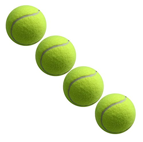 My Pets Balles de tennis Lot de 4