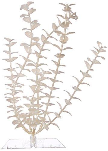 UPC 046798192657, GloFish 19265 Bacopa Plant, Large, White