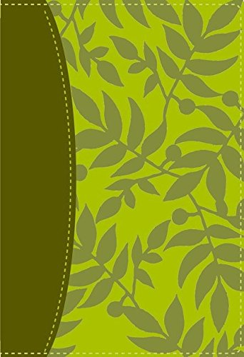 Santa Biblia de estudio Serie 50 RVR 1960  [Zondervan] (Tapa Dura)